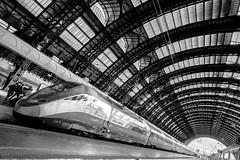 FrecciaRossa - High-speed Train (Brigante..) Tags: street blackandwhite station milano sony alpha stazionecentrale brigante lunaphoto urbanarte frecciarossa ilce6000 sonya6000