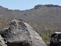 Signal Hill #5 (jb10okie) Tags: park travel vacation arizona usa art america spring ruins nps trails saguaro nationalparks saguaronationalpark 2013 westdistrict