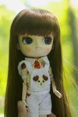 Kedada 25-05-14 (> Lily <) Tags: outside doll meeting dal obitsu