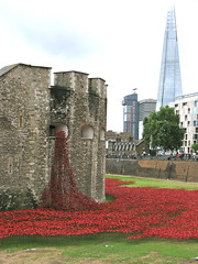 Bloodswept lands and seas of red (Ex-Grungy Student) Tags: london art ceramics wwi installation poppies rememberance ww1 toweroflondon dayout theshard paulcummins bloodsweptlandsandseasofred