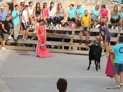 FiestasVispal14-080