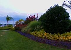 Gardens of an outdoor event pavillion surrounded by the Chesapeake Bay (d1pinklady) Tags: wedding cake bay cupcakes site outdoor lawn event chesapeake herring pavillion polynesian herringtononthebay