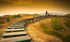 Warum ich noch in diesem Jahr zurck ans Meer muss... I (O.I.S.) Tags: sunset sea germany way island deutschland meer sonnenuntergang path north insel sonne nordsee nordrheinwestfalen weg fhr lippstadt pfad