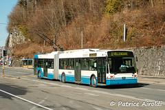 VMCV 5 - Chillon, Veytaux (07/022008) (P. Airoldi) Tags: chillon trolleybus vanhool veytaux vmcv5