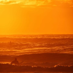Yellow Orange Morning (alexkess) Tags: beach sunrise photography surf waves bra sydney australia surfing nsw alexander sutherland maroubra gms alexkess kesselaar goodmorningsydney