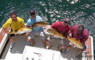 Amelia Island group fishing charters