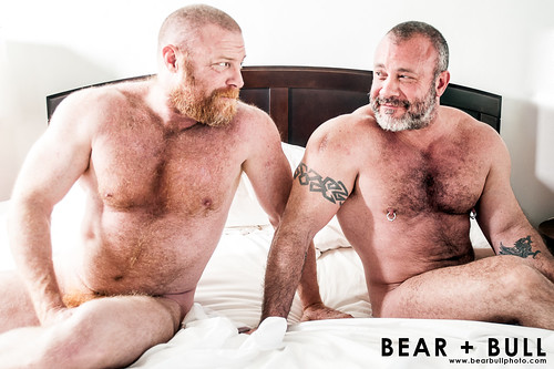 Hottest gay bears