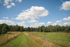 Be gentle. (Raphs) Tags: blue summer sky sun green grass clouds forest fence landscape scenery sweden hiking path meadow fluffy peaceful sverige canoneos350d gentle raphs hayland tamronspaf1750mmf28xrdiiildaspherical hallandsln sandshultsmosse gammalsbo