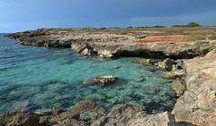 Punta pizzo Gallipoli (maurizio battistini) Tags: nikon foto natura punta gallipoli maurizio pizzo forl battistini d5100