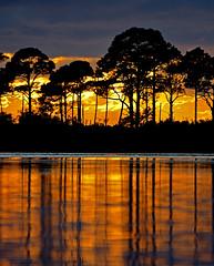 PORT ST JO PENINSULA SUNSET VERTICAL (Wolf Creek Carl) Tags: sunset nature water landscape outdoors florida nikonflickraward portstjopeninsula