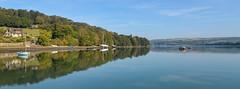 15322860345 365f0816c9 m The Teifi Estuary Cardigan