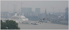 Cruise Ship Discovery ...  Cruise & Maritime Voyages. Arriving (Aquarius15) Tags: cruise autumn sky mist water skyline architecture boats geese waves belgium ships antwerp migration cruisemaritimevoyages cruiseshipdiscovery riverthescheldt