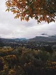 Signs of fall (cjazzlee) Tags: kamloops vscocam