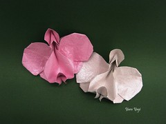 Orchid (Yara Yagi) Tags: origami paper papel orquídea orchid flor flower