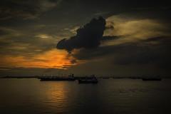 Evening (Askjell) Tags: aww maritime ocean road ships singapore sunset vessel vessels anchorage sundown