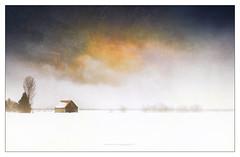 nebula (patrice ouellet) Tags: nebula nébuleuse sagan patricephotographiste cosmic art cosmique space espace