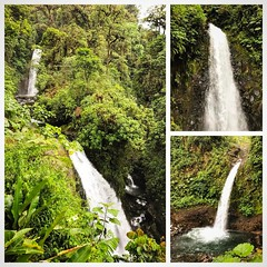 Checking out the beautiful waterfalls at La Paz Waterfall Gardens on my last day in #CostaRica
