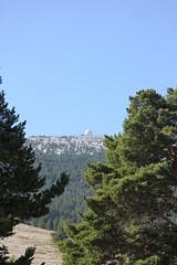 IMG_0598 (Gilles Couteau) Tags: provence vaucluse ventoux montventoux