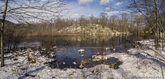 Otterhole Road Pond_15868-15870 (smack53) Tags: smack53 outdoors outside winter wintertime panorama lake pond water snow snowscape ice trees westmilford newjersey canon powershot g12 canonpowershotg12