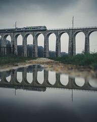 Saanenviadukt Gümmenen (noberson) Tags: reflection puddle viadukt saane bls train bahn bridge viaduct gümmenen mühleberg switzerland schweiz zug brücke spiegelung