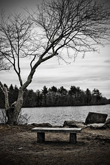 Enjoy the View (Silverio Photography) Tags: canon 60d sigma 1770 newengland massachuetts suburb photoshop elements topaz adjust hdr nature lake water easton borderland state park
