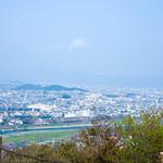 Monkey Park Iwatayama thumbnail