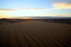 Naturaleza (Aysha Bibiana Balboa) Tags: paisajes atardecer agua rboles playa cielo puestadesol camello dunas flore tulipanes desiertos canon650d distintostiposderosaslarosa ayshabibianabalboa