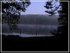 Nebelschwaden (sntssche) Tags: morning germany deutschland dawn nebel herbst alemania sonnenaufgang allemagne morgen brandenburg germania 2010 morgens stille frh ruhe eichhof linowsee ankapraklana shankaprakshalana