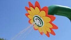 IMG_8578 copy (raindropproducts1) Tags: web sunflower dunedin fl 2009 tradeshow 10665 highlanderpark sunflowerhero