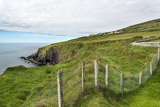 Dingle Fence
