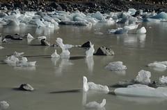 Lac Hooker gelé