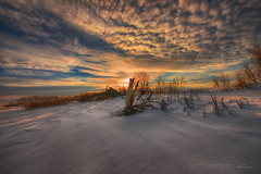 White Desert of Canada (IanDMcGregor) Tags: morning trees winter snow canada beautiful beauty sunrise landscape ian dawn frozen nikon wideangle saskatchewan d800 mcgregor rokeby ianmcgregorphotographycom