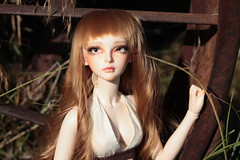 Green Gables (CrescentBunny) Tags: ball doll bjd resin fairyland abjd 60 f60 jointed mirwen feeple