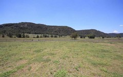 Lot 10 & Lot 48 Giants Creek Road, Sandy Hollow NSW