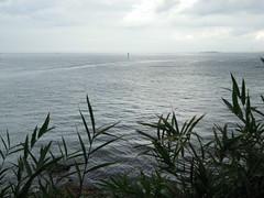 DSCN0402 (takumi_kobayashi1) Tags:    2014814