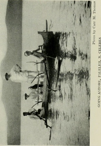 Image from page 186 of