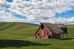 20140620_palouse (elaine_calvert) Tags: red barn farmland weathered palouse