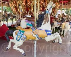 Carnival Carousel, 2014 Warren County Farmers Fair, New Jersey (jag9889) Tags: carnival horse usa animal newjersey ride unitedstates unitedstatesofamerica nj carousel fair amusementpark creature phillipsburg agricultural gardenstate 2014 warrencounty farmersfair jag9889 20140730 2014warrencountyfarmersfair