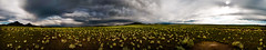 The Plains of San Agustin (James Edward Creamer) Tags: panorama newmexico clouds monsoon highdesert plains stitched anthill plainsofsanagustin rabittbrush
