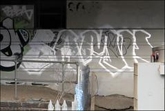 Sample TGS (Alex Ellison) Tags: urban graffiti boobs tag sample graff festa tgs trackside northlondon samp tracksgetsmashed