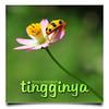 Lebarkan Sayapmu   Nature   Unedited (AnNamir™ c[_]) Tags: flower macro nature beautiful nikon getty bunga tamron pahang gettyimages unedited kumbang kualalipis keledek d300s annamir muktasyaf ielanye rumahwanaki