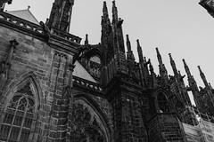 St. Vitus Cathedral, Prague (georgeant) Tags: bridge europe prague charles praha czechrepublic bohemia vltava staremesto malastrana