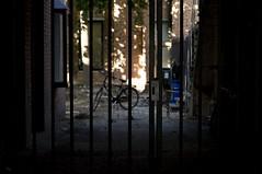 Detrás de la verja (xirmi) Tags: light shadow luz amsterdam bike bicycle reja bars lock bicicleta sombra verja candado