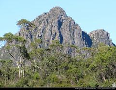 Cradle Lake NP, Tasmania, Australia (JH_1982) Tags: park mountain lake nature landscape scenic national tasmania np australien tas tassie cradle australie 澳大利亚 tasmanien オーストラリア tasmanie австралия tasmânia 오스트레일리아 주 塔斯馬尼亞州 тасмания タスマニア州 태즈메이니아