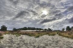 Loonse en Drunense Duinen. (Patrick Mortko) Tags: sun netherlands landscape pentax hei gras duinen hdr heide landschap natuurmonumenten k3 loonseendrunenseduinen natura2000 nationaalparkdeloonseendrunenseduinen da15mmf4limitedhd