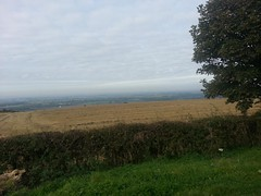 20140928_103544_Normanby Rd