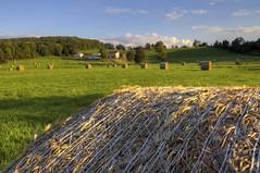 Last Hay of the Season (paininthelens) Tags: canon farm 5d hay