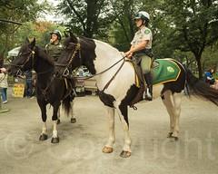 NYC Parks Mounted Unit, Central Park, New York City (jag9889) Tags: park nyc newyorkcity horse woman usa ny newyork animal ranger unitedstates centralpark manhattan unitedstatesofamerica landmark cp creature mu horseback equine 2014 nycparks publicpark mountedunit jag9889 20140921