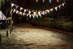 La Fiesta del Libro y la Cultura 2014 (Dafero) Tags: color colombia fiesta libro medellin cultura jardnbotnico 2014 medellncolombia colombianculture lafiestadellibroylacultura2014