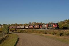 CN 9540 Train G810 (Trevor Sokolan) Tags: railroad cn branch diesel grain railway ab trains canadian alberta locomotive local peddler railfan freight cnr xanada canadiannational switcher hoppers emd gmd camrose gp402w